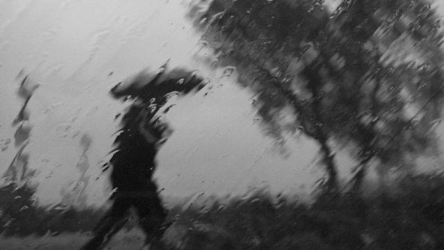 9 октября в Костромской области ожидается небольшой дождь и ветер