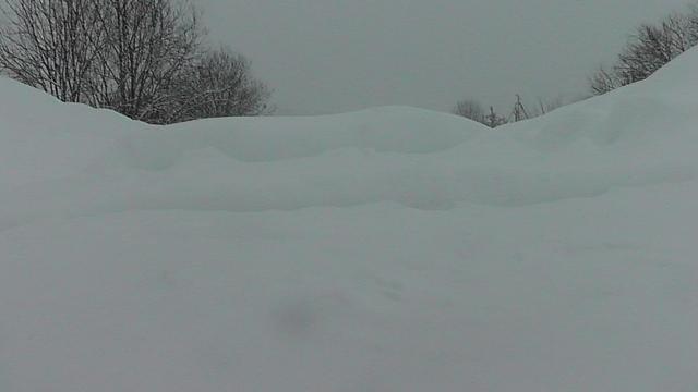 Деревни и села Костромской области оказались в снежном плену