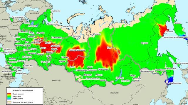 В июле в Костромской области ожидается риск повышенного возникновения лесных пожаров, превышающий среднемноголетние значения