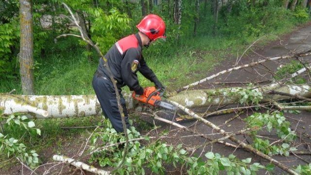 В Костромской области ликвидируют последствия шквалистого ветра