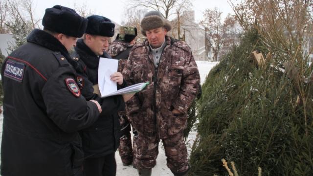 В Костроме полиция проверила елочные базары