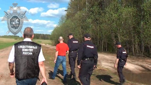 В Костромской области осужден мужчина за убийство несовершеннолетней, совершенное в 2015 году