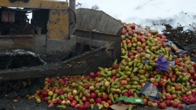В Костромской области уничтожили большую партию польских фруктов