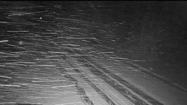 20 января в Костромской области ожидается снег и метель